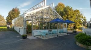 This Enchanting Greenhouse Restaurant Is Worth The Drive From Baltimore