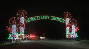 Take A Dreamy Ride Through The Largest Drive-Thru Light Show In Michigan, Lightfest