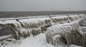 11 Brutal Truths About Surviving A Buffalo Winter