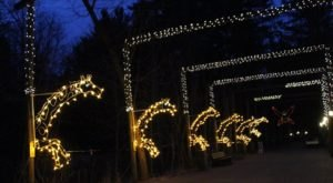 The Michigan Zoo That Comes To Life With Holiday Spirit Every Winter