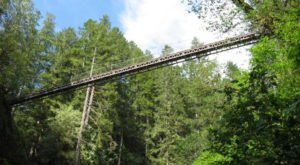 The Stomach-Dropping Suspended Bridge Walk You Can Only Find In Oregon