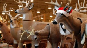 7 Weird And Wacky Holiday Traditions You'll Only Get If You're From Arkansas