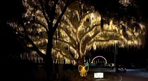 Take A Dreamy Ride Through The Largest Drive-Thru Light Show In South Carolina, Holiday Festival Of Lights