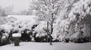 Massive Blizzard Blanketed Dallas – Fort Worth In Snow In 2010 And It Will Never Be Forgotten