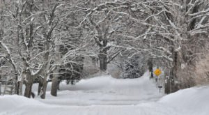 11 Things You Quickly Realize When You Go Home To Michigan For The Holidays