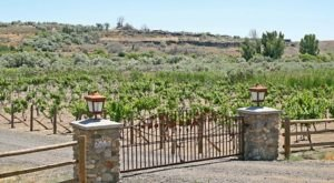 You Can Spend The Night At This Winery In Idaho And It's Just As Divine As It Sounds