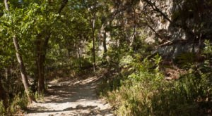 The 6 Most Beautiful Bike Trails You Can Take In Austin