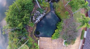 One Of Hawaii's Last Remaining Freshwater Springs Is Hiding In Plain Sight