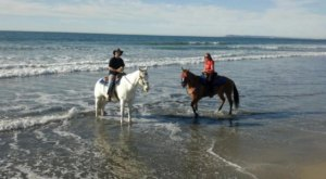The Horseback Riding Trail In Southern California That's Pure Magic