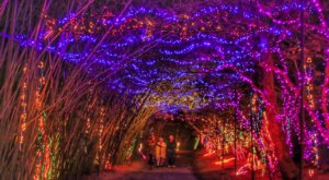 The Mesmerizing Christmas Display In Alabama With Over 3 Million Glittering Lights