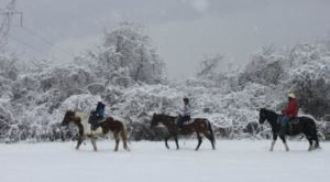 The Winter Horseback Riding Adventure Near Cincinnati That's Pure Magic