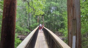 This Little Known Park In Florida Is A Hidden Gem And It Will Take Your Breath Away