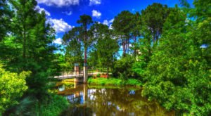You Could Spend An Entire Day In This Iconic New Orleans Park And Still Not See Everything