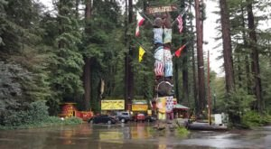 You Have To Visit The One Place In Northern California That Defies Physics