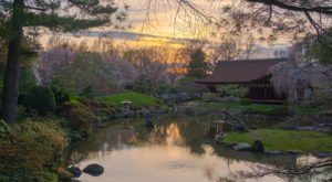 This Underrated Japanese Garden Just Might Be The Most Beautiful Place In Philadelphia