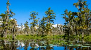 A Trip To This Wildlife Refuge Near New Orleans Is A Picture Perfect Adventure