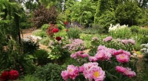 The Secret Garden In Louisville You're Guaranteed To Love
