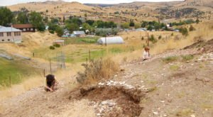 The Epic Park In Oregon Where You Can Take Home 30-Million-Year-Old Fossils