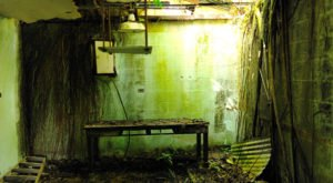This Creepy Spot Deep In The Woods Of Hawaii Is Like Something Out Of A Horror Movie