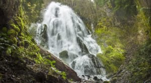 These 3 Oregon Waterfall Hikes Are Short Enough That You Can Do Them All In One Afternoon