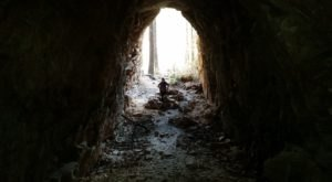 The Amazing Hiking Trail In Arizona That Takes You Through An Abandoned Train Tunnel