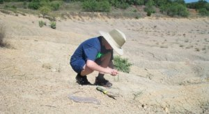 The Epic Park In Texas Where You Can Take Home 300-Million-Year-Old Fossils For Free