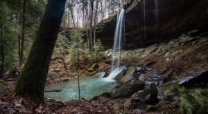 You'll Fall In Love With Nature After Visiting These 9 Beautiful Places In Alabama
