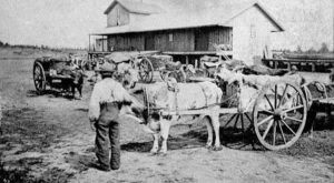 These 10 Rare Photos Show North Dakota's Ranching History Like Never Before