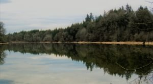 This Wildlife Refuge Near Portland Is Perfect For A Winter Day Trip