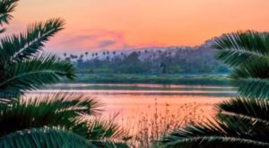 15 Photos Of Tropical Oases Right Here In The U.S. That Will Fuel Your Wanderlust
