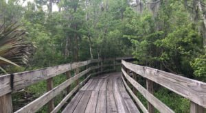 This Quaint Little Trail Is The Shortest And Sweetest Hike In Louisiana