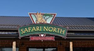 There's A Wildlife Park In Minnesota That's Perfect For A Family Day Trip