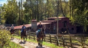 This Horseback Tour Through The Georgia Countryside Will Enchant You In The Best Way