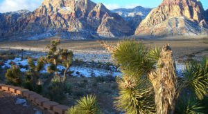 9 Reasons No One In Their Right Mind Visits Nevada In The Winter