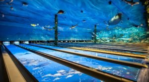 A One-Of-A-Kind Ocean Themed Restaurant And Bowling Alley, Uncle Buck's Fish Bowl & Grill In Missouri Is Insanely Fun