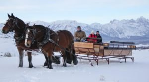 This Sleigh Ride Dinner In Wyoming Will Take You On An Enchanting Journey