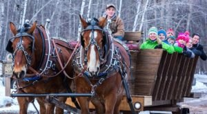 This Sleigh Ride Dinner In Michigan Will Take You On A Whimsical Journey