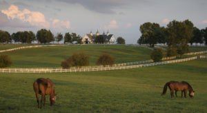 If You Don't Love Kentucky, Then You Haven't Been To These 14 Places In The Bluegrass