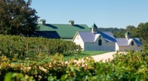 The Remote Winery Near Baltimore That's Picture Perfect For A Day Trip