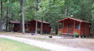 This Log Cabin Campground In Delaware May Just Be Your New Favorite Destination