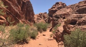 This Hidden Trail In Nevada Leads To A Magnificent Archaeological Treasure