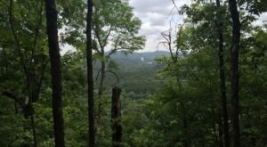 The One Hike In Oklahoma That Makes You Feel Like You've Landed In A Jungle