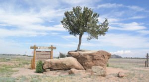 The 11 Bizarre, Wild, And Downright Weird Wyoming Attractions You Gotta See