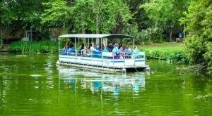The Safari Boat Ride In Louisiana That's Fun For The Whole Family