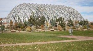 This Massive Greenhouse In Colorado Is Like A Dream Come True