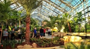 Lauritzen Gardens In Omaha Has The Best Greenhouse In Nebraska