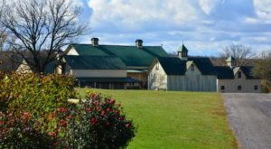This Is The Oldest Winery In Maryland And Its History Will Fascinate You