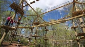 This Amazing Aerial Forest Adventure In Connecticut Will Take Your Breath Away