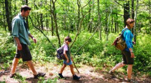 9 Totally Kid-Friendly Hikes In Massachusetts That Are 1 Mile And Under