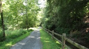 9 Totally Kid-Friendly Hikes In Delaware That Are 1 Mile And Under